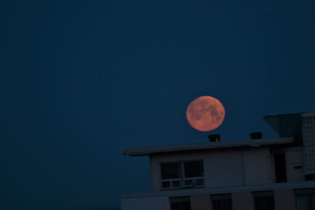 Moon set over Edmonton by Larry Wood - June 5th about 5am -ISO 100, 300 mm, 1/60 second